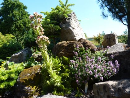 zahradni detail